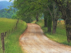 Long Counrty Road Inspiration